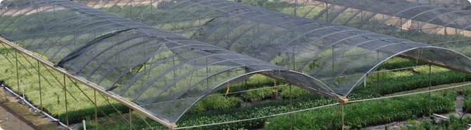 Shade Cloth Greenhouse Garden Shade Cloth NYP Corporation