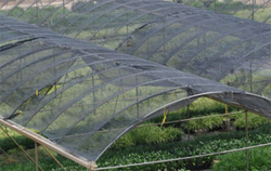 NYP Shade Clothes Greenhouse Shade Cloth ...
