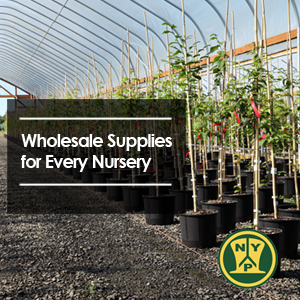 Wholesale Supplies for Every Nursery
